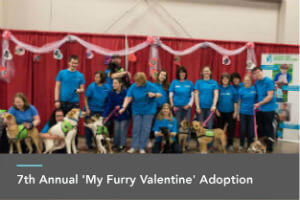7th Annual 'My Furry Valentine' Adoption